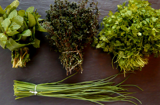 How-to-store-its-fresh-herbs