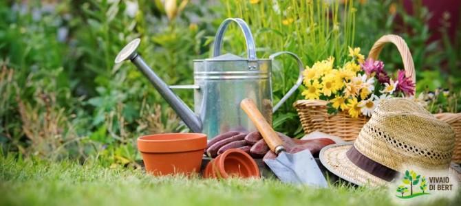 Cosa fare a inizio stagione per avere il giardino bello tutto l'anno?